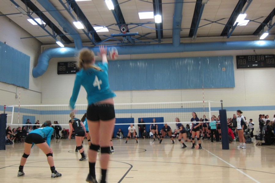 IMG 0032 23 900x600 Goal Congruence   My Great Niece and Her Volleyball Team fun