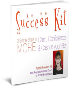 Success Kit 3D Cover Success Kit